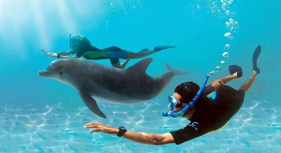Hurghada snorkeling trip