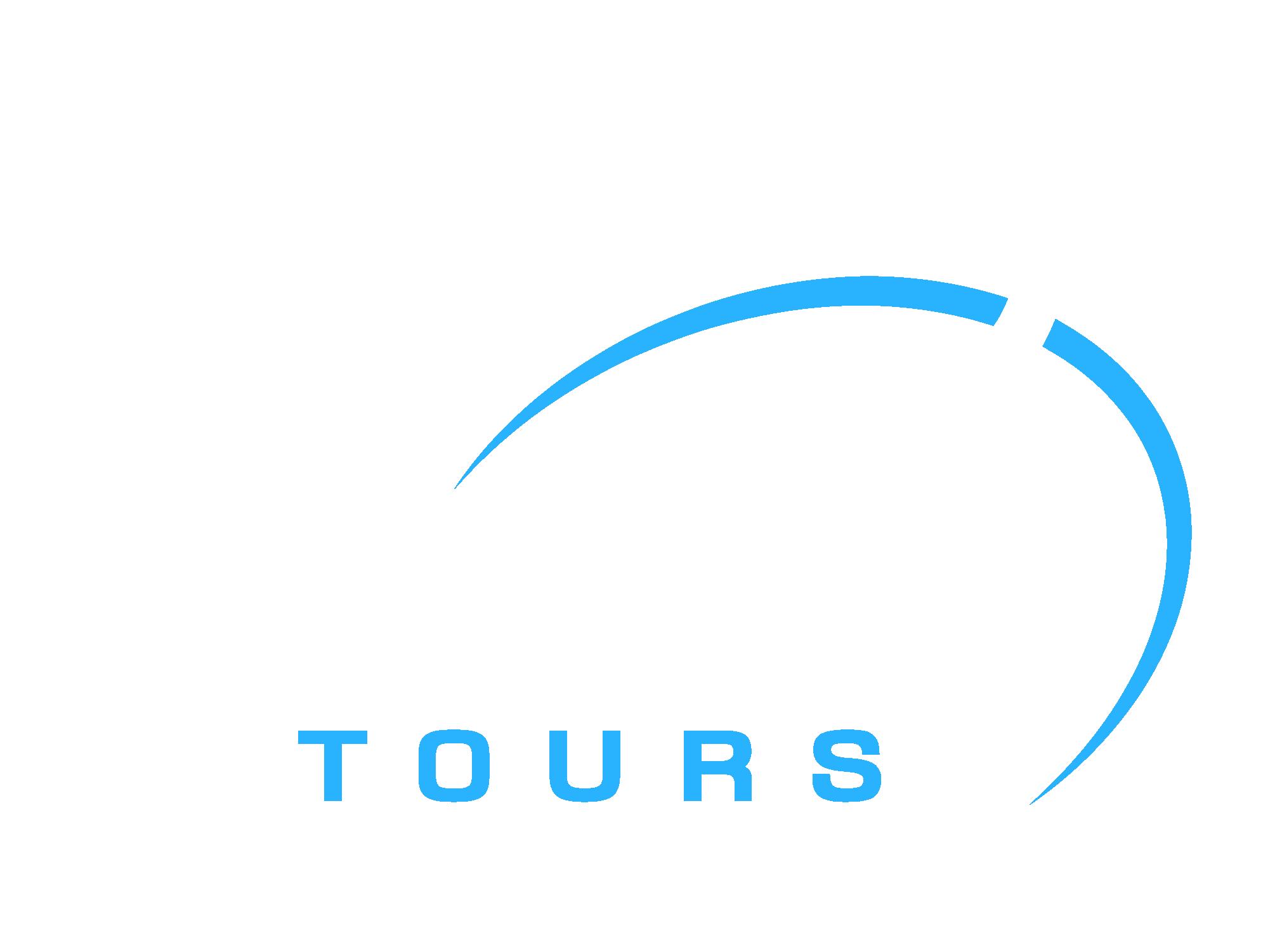 Deluxe Tours Egypt logo