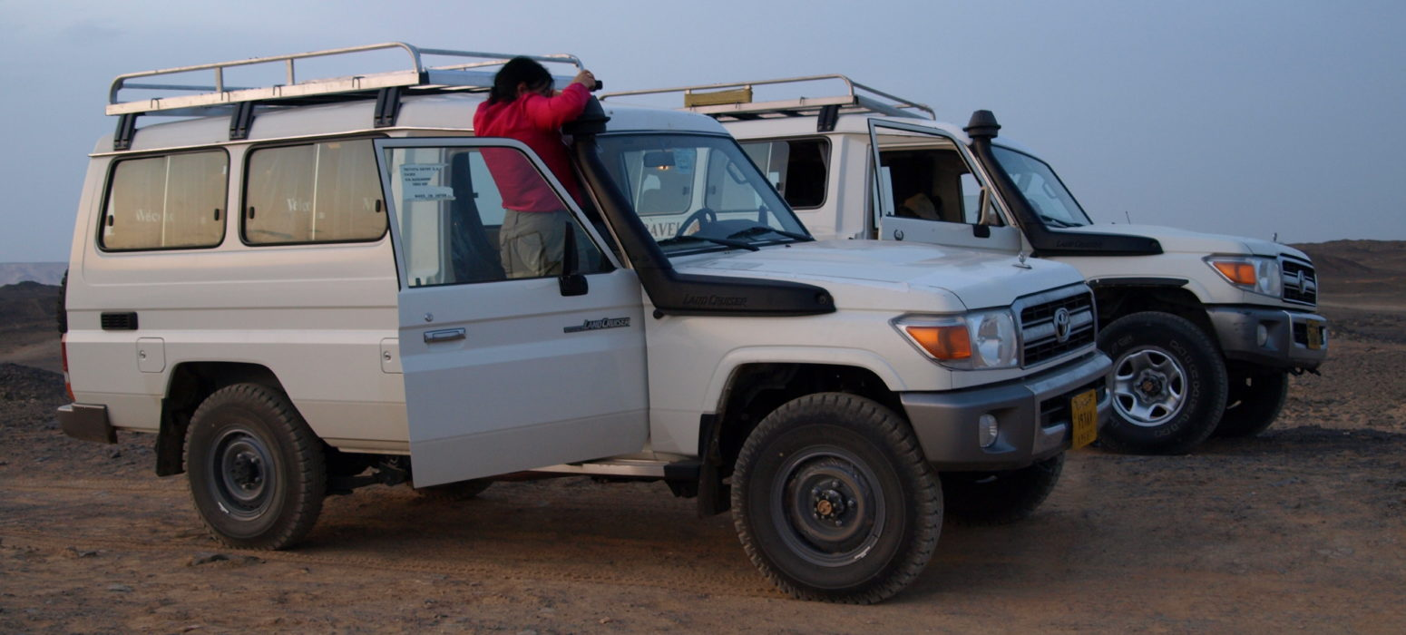 Egypt desert safari tours, deluxe tours egypt