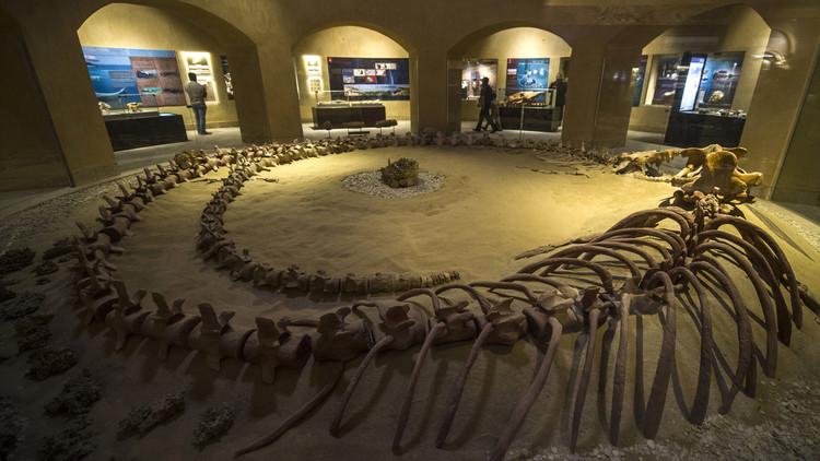 Wadi Al Hitan, Whales valley, valley of whales, valley of the whales, Deluxe Tours Egypt, Deluxe travel Egypt