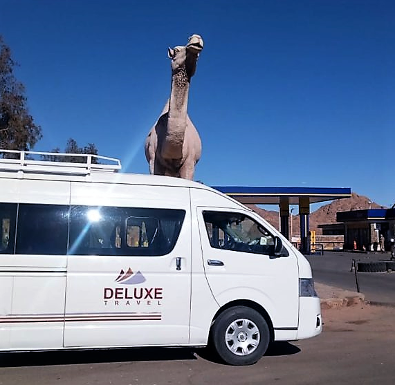 Aswan airport transfer, Deluxe Travel Egypt, Deluxe Tours egypt