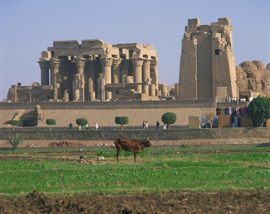 Temple of Kom Ombo Aswan