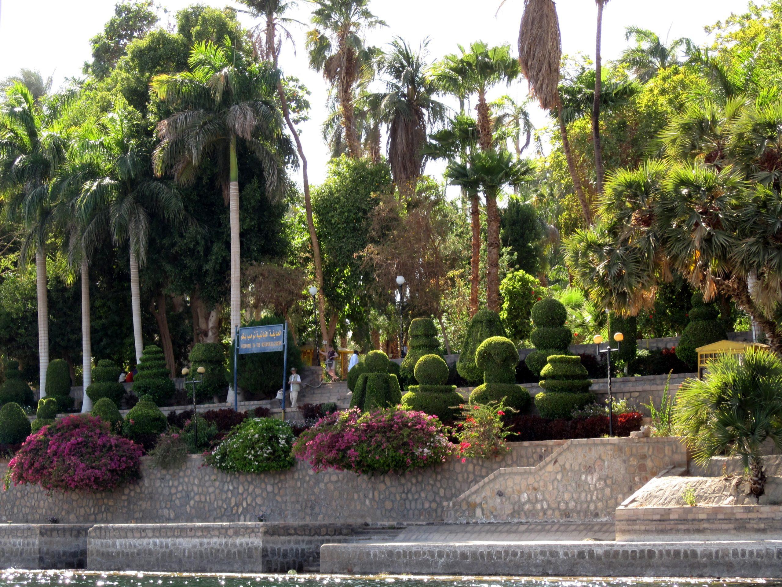 botanical garden in aswan. kitchner island