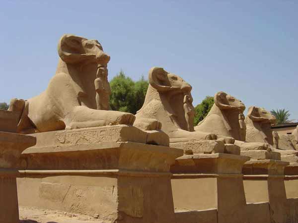 avenue of Sphinx, Karnak temple, luxor